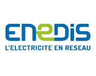 Enedis, Société de production et de distribution d'électricité